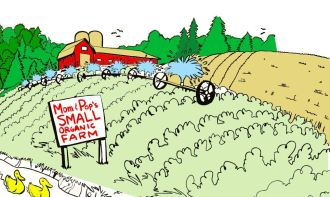 Cartoon image of a small organic farm